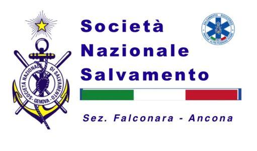 Sns-logo-top