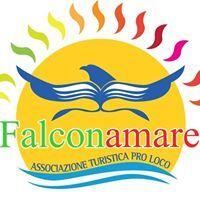 Falconamare.1 N
